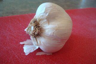 Tutorial: Peeling and Chopping Fresh Garlic