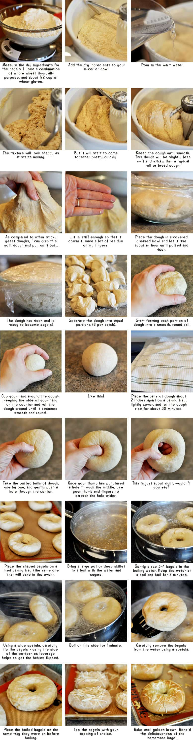 step-by-step collage of how to make bagels from scratch