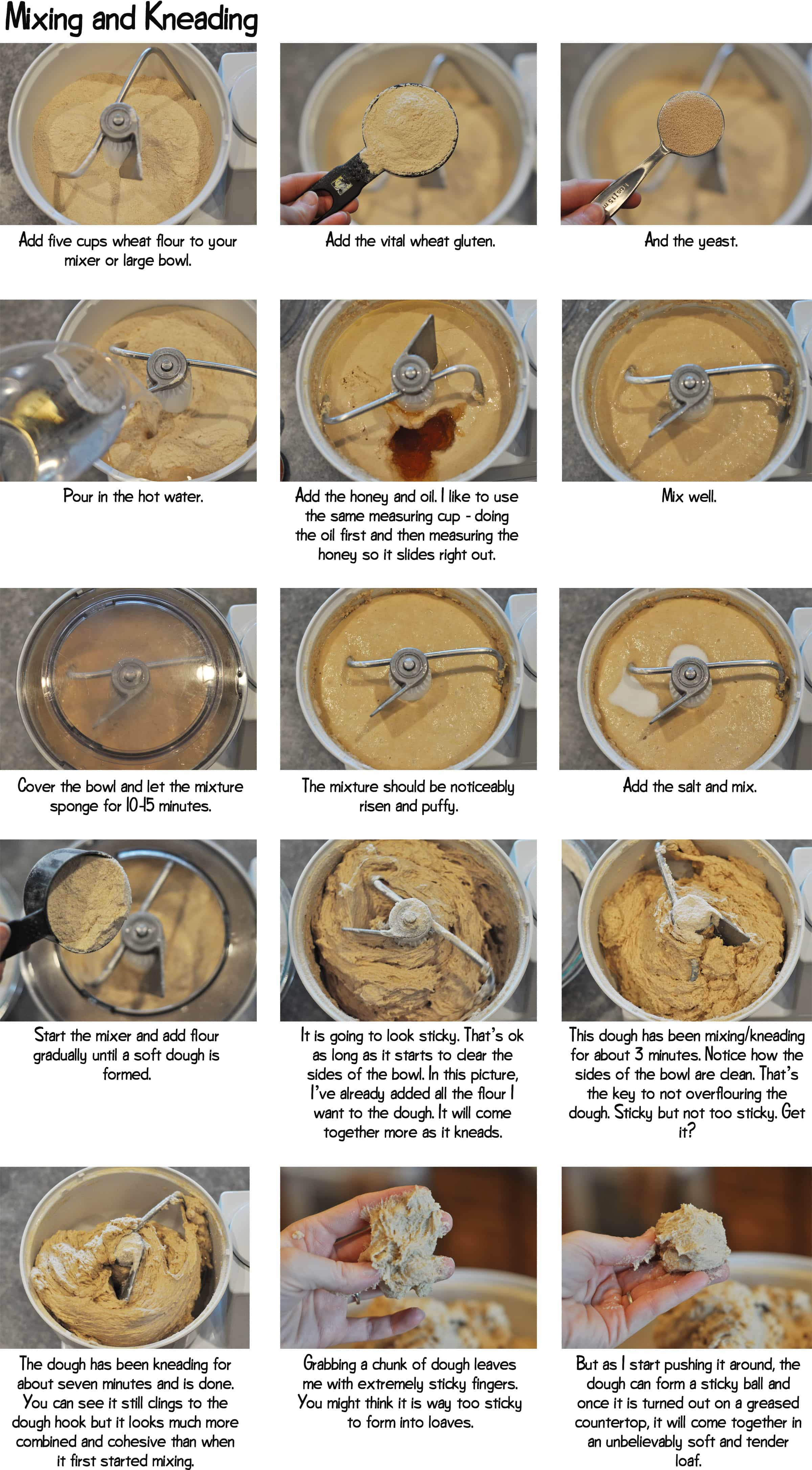 collage of step-by-step photos of whole wheat bread dough mixing and kneading in a Bosch