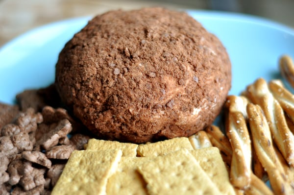 cocoa dusted chocolate chip cheeseball with graham crackers and pretzels around the side of the plate