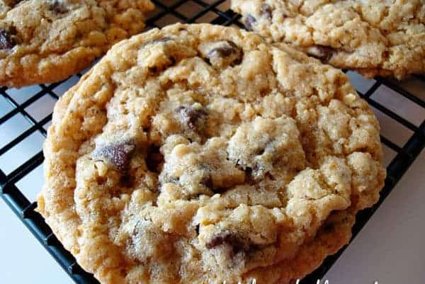 chocolate chip cookie on a cooling rack