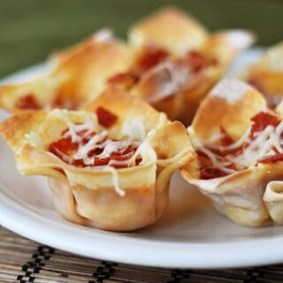 Hot Pizza Bites