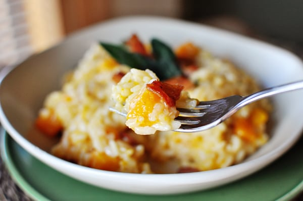white bowl of cooked butternut squash risotto, with a fork holding a bit of the risotto over the bowl