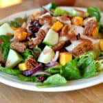 Romaine Salad with Chicken, Cheddar, Apples, and Cranberry Vinaigrette