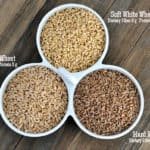 Wheat and Wheat Grinding 101: The Wheat {Types, Where to Buy, and What to Make}