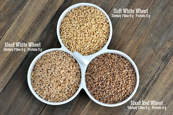 types-of-wheat-3-circles