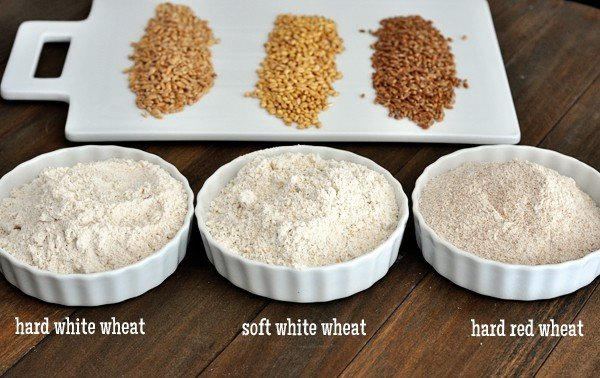 Wheat and Wheat Grinding 101