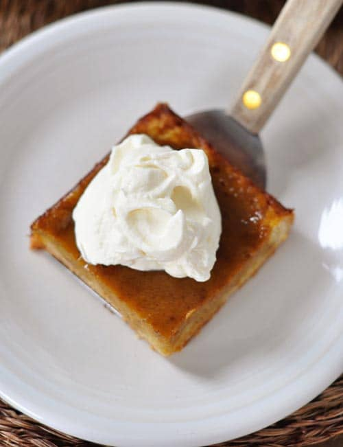 top view of a slice of pumpkin pie sheet cake with a dollop of whipped cream on top on a white plate