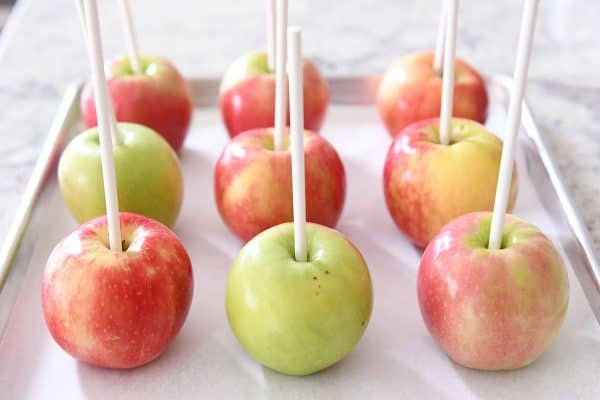 Apples on sheet pan with white sticks in them before dipping in caramel.