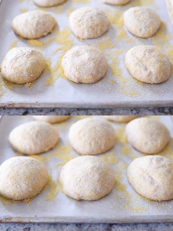unrisen and risen easy homemade english muffins on parchment lined baking sheets