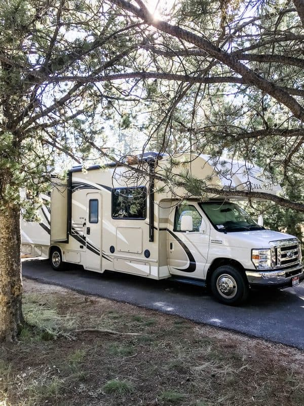 rv motorhome parked under trees
