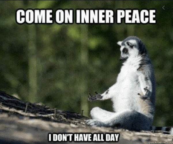 meme lemur doing yoga come on inner peace i don't have all day