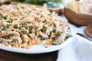 Sesame Thai Chicken Dip {Most Amazing Dip On the Whole Planet Earth}