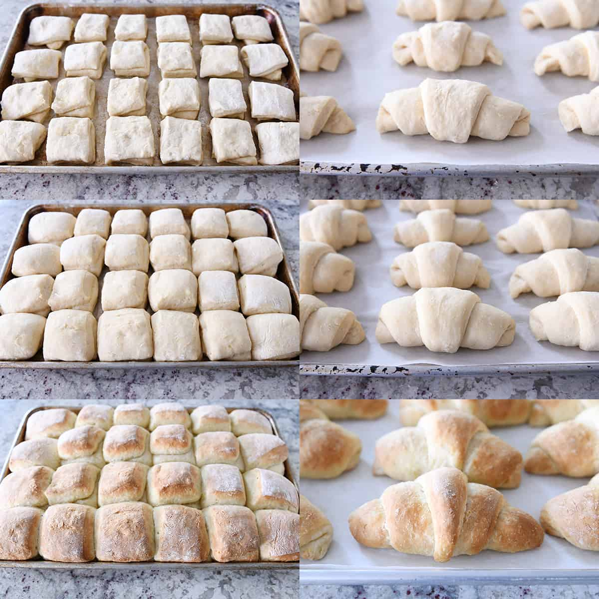 side by side pictures of square rolls and crescent rolls rising on baking pans and baking until golden brown