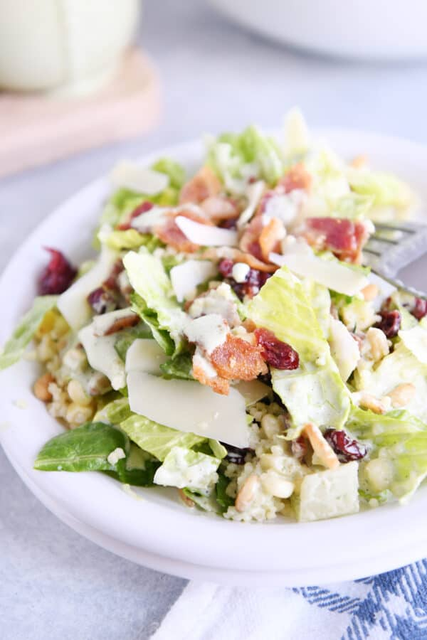 white plate with romaine lettuce, craisins, bacon, parmesan, and fresh basil dressing