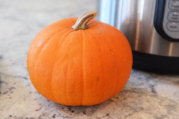 A small pie pumpkin sitting on a kitchen counter.