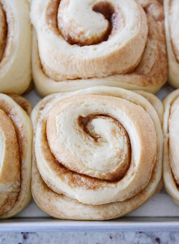 Top view of a pan of unfrosted cooked cinnamon rolls.
