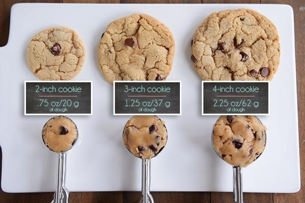 cookie scoops sizes