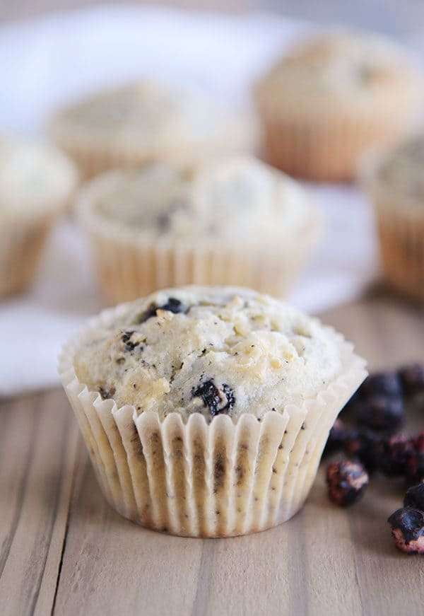 Blueberry muffins in white liners with a pile of blueberries next to the front muffin.