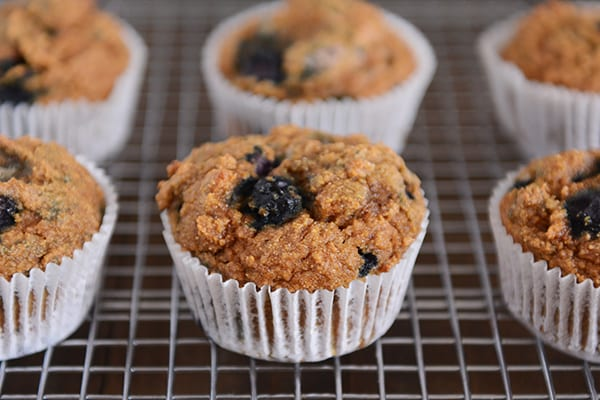 Whole Wheat Blueberry Pumpkin Muffins