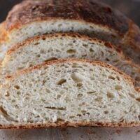 Crusty Artisan No-Knead Bread