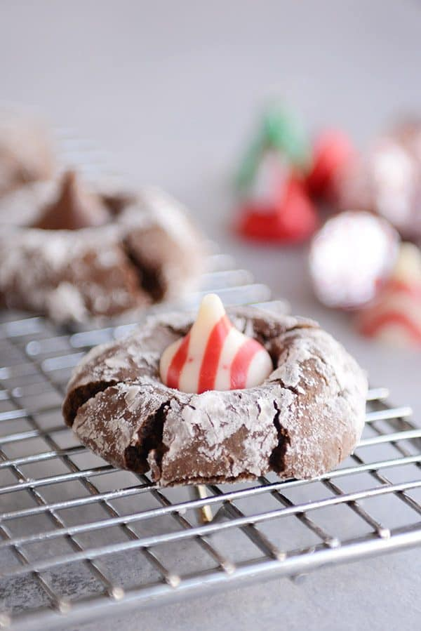 Chocolate Peppermint Crinkle Blossom Cookies: The Perfect Christmas Cookie!