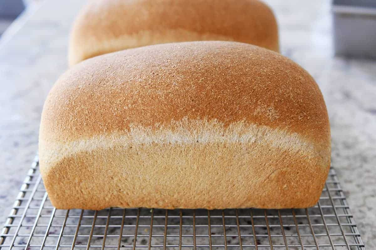 Small Batch Soft and Fluffy Whole Wheat Bread {Perfect for ... on pasta with kitchenaid mixer, cookies with kitchenaid mixer, cinnamon rolls with kitchenaid mixer, kitchenaid 9-speed hand mixer, making bread with vitamix, making bread with olive oil, making bread at home,