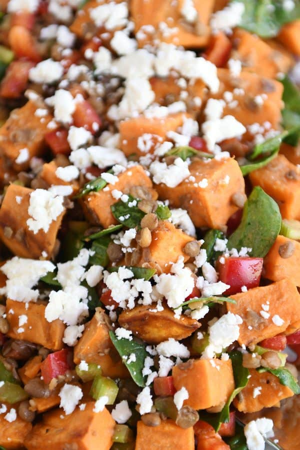 Roasted sweet potato and lentil salad on white platter.