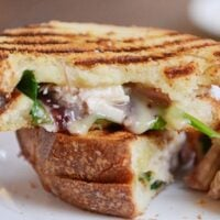Turkey Brie Cranberry Spinach Panini