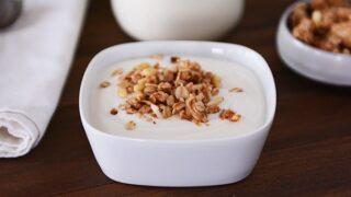 DIY Homemade Yogurt {New and Improved + Updated Tutorial}